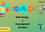 Web design & application development