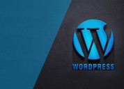 Introduction about wordpress development