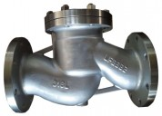 Buy lift check valves manufacturers in india