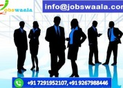 Manpower consultant in delhi ncr