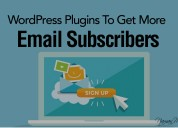 Wordpress subscription plugin