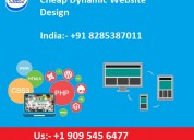 Cheap dynamic website design in delhi