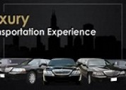 Luxury cars for business and pleasure
