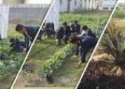 Rit top forestry college in uttarakhand