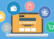 E-commerce development company in delhi