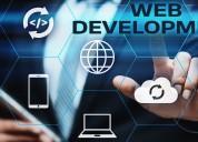 web development company nagpur