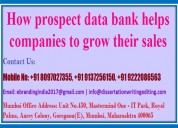 How prospect data bank helps companies to grow