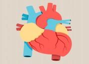 Dr praveen kumar best cardiologist in kurn