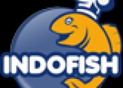 Fish products   canned fish   sardine   mackerel -