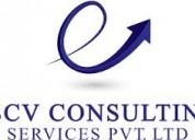 Payroll company in delhi
