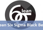 Certification in lean six sigma black belt