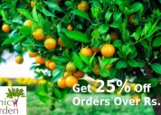 Get 25% off orders over rs.3999
