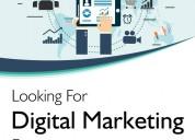 Digital marketing jobs online
