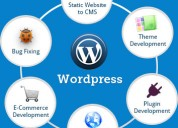 Best wordpress development services available