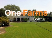 Farm house in sohna