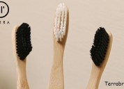 Where to buy bamboo toothbrush online