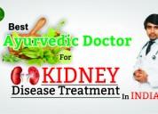 Best ayurvedic doctor for kidney disease in india