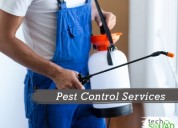 Find affordable pest control service in bangalore