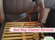 Bed bug control services in bangalore