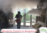 Reliable mosquito control in bangalore