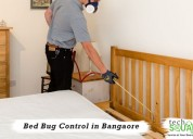 Instant bed bug pest control in bangalore