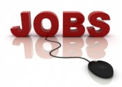 Online marketing jobs freshers only.