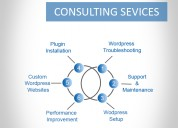 Wordpress consulting services|wordpress consultant