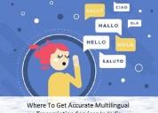 Where to get accurate multilingualtranscription