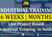 Winter training with industrial expert in noida