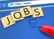 Online promoter for tourism company ltd vacancies