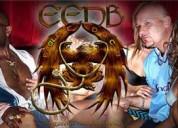 Eagle e and doc b (eedb) - shlepp entertainment