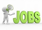 Earn extra income candidate regular jobs freshers.
