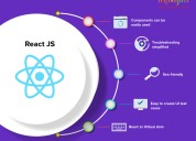 Hire reactjs developers - infinijith.com