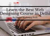 Web designing course in delhi by dmp