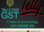 Best tally institute in gurgaon- sla consultants