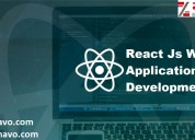 React js web application development services
