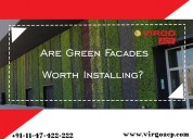 Are green facades worth installing?