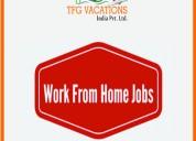 Digital marketing executive job in tfg