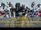 Fantasy sports website development like dream11
