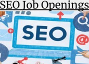 Boost your career by getting seo internship in pun