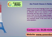 Ace french classes in noida