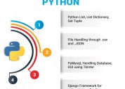 6 months project based python training course | jo