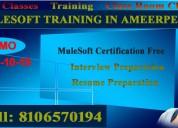 Mulesoft training in ameerpet