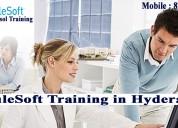 Mulesoft training institute  in hyderabad