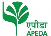 Apeda license consultants in delhi