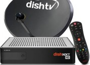 Get exciting offers for new dish tv connection
