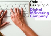 Website designing company in delhi - biz glide web