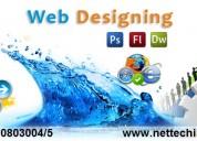 Best web design training institute