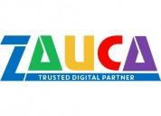 Business & ecommerce web design company - zauca