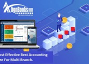 Grab cost effective accounting software for firm